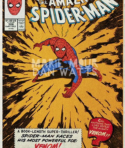 web-spidey-dan